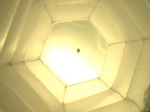 Inflatable hive